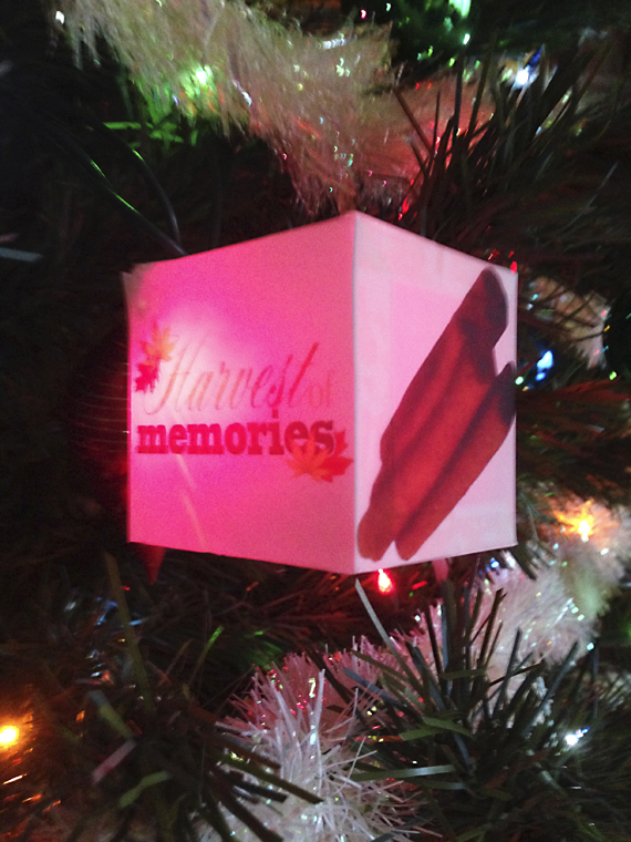 holiday photo cube lights