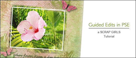 Guided Edits in Photoshop Elements - tutorial intro banner