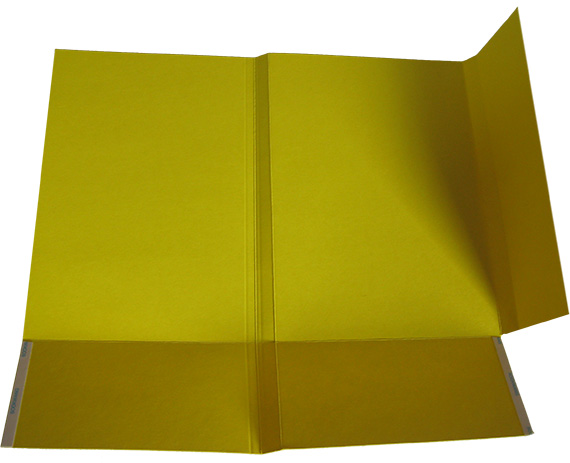 folding of file folder