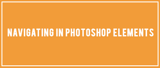 Navigating Photoshop Elements
