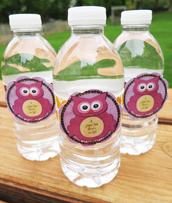 printable-birthday-party-waterbottle