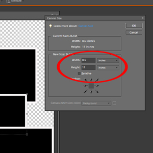 add dimensions in image resize panel
