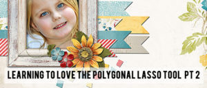 Polygonal Lasso in Photoshop - Part 2