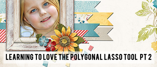 Learning to Love the Polygonal Lasso Tool – Part 2