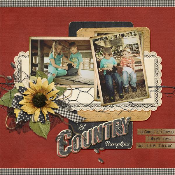 Country Bumpkins_JoyceS_LO_600