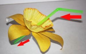 assemble paper daffodils