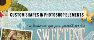 Custom Shapes in Photoshop Elements