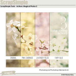 ScrapSimple Tools Actions: Magical Photos 2