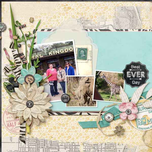 sketch layout june 2014 shannon