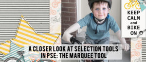 Selection Tools in Photoshop Elements - Marquee Tools
