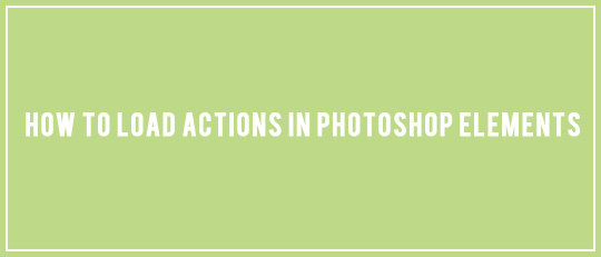 How to Load Actions in Photoshop Elements