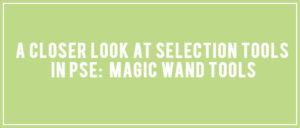 Selection Tools in PSE: Magic Wand Tool