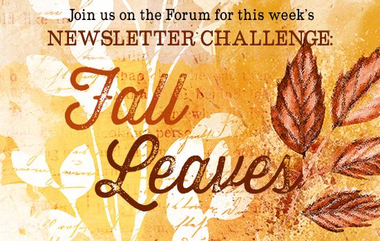 11-18-14_Forum