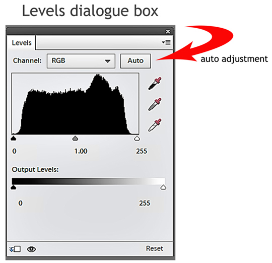 The levels dialogue box