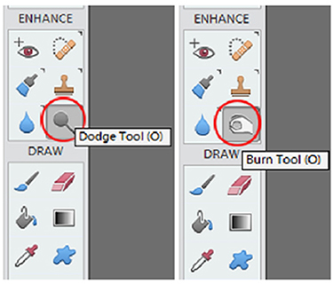 The Enhance panel of Photoshop is where to find the Dodge and Burn Tools