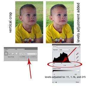 editing photos using crop and levels adjustment tools