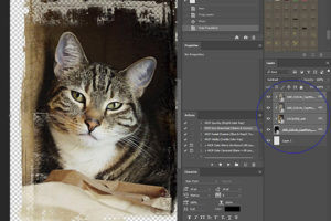 A screenshot in photoshop showing how to clip a mask under a photo.