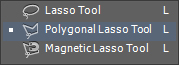 lasso tool in selection panel