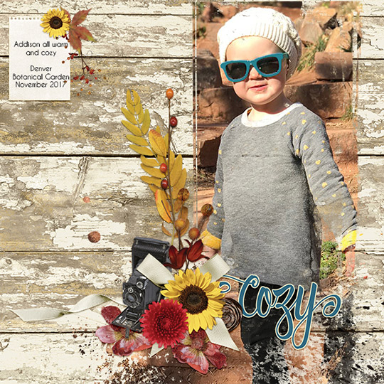 Scrapbook layout using Fall Snapshots Club
