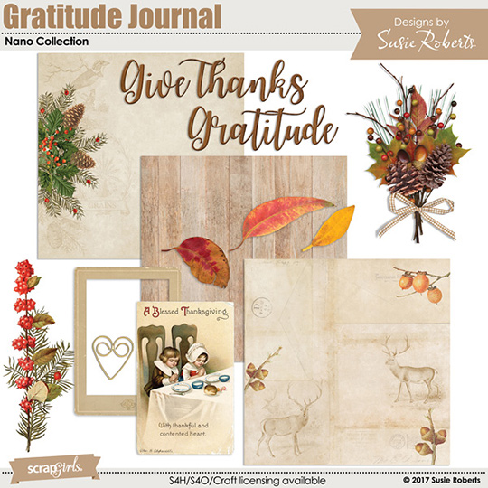 Nov 2017 SS Gratitude Club Nano Bonus