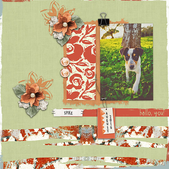 Scrapbook layout using Jan 2018 Club Warmth