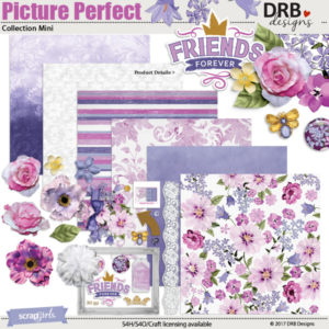 Picture perfect digital kit