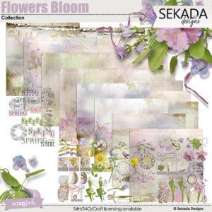Flowers bloom digital kit