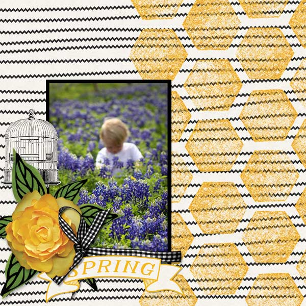 Take 3 layout - Honey Garden