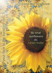 June 2018 ATC Swap sunflower