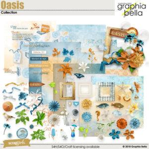 Oasis digi kit