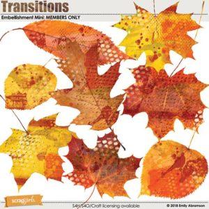 Nov 2018 Transitions SG Club BONUS