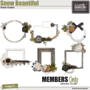 Jan 2019 SG CLUB Snow Beautiful Bonus