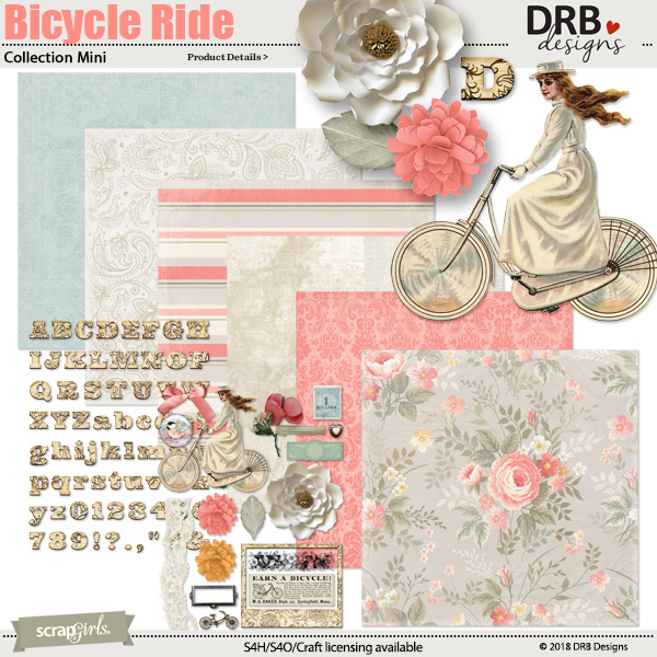 Bicycle Ride Digital kit