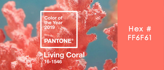 Pantone's Color of the Year 2019