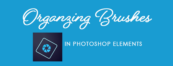 Tips for Organizing Brushes in Photoshop Elements