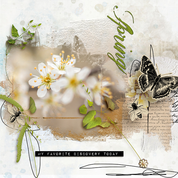 Layout with Vintage Spring