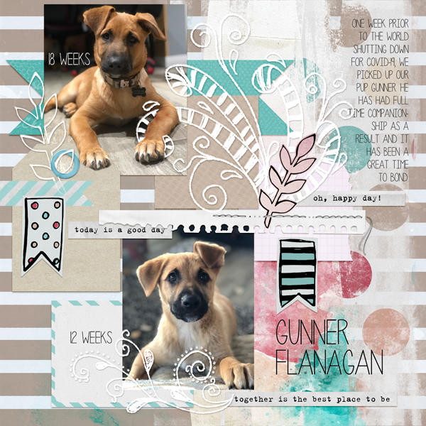 layout by Amy using Everyday Moments