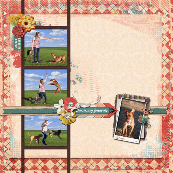 layout using Favorite Things by Nicole